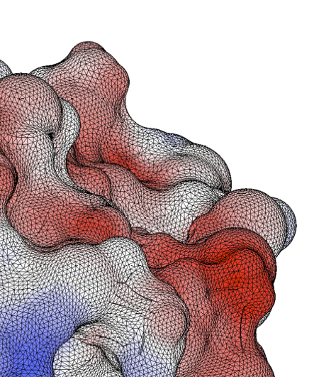 Close-up of the surface mesh on a lysozyme molecule, showing the surface charge obtained with PyGBe.