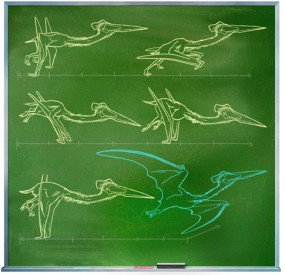 Illustration of the pterosaur quadrupedal launch. Appeared in Popular Science, credited to Kevin Hand (3 March 2009).