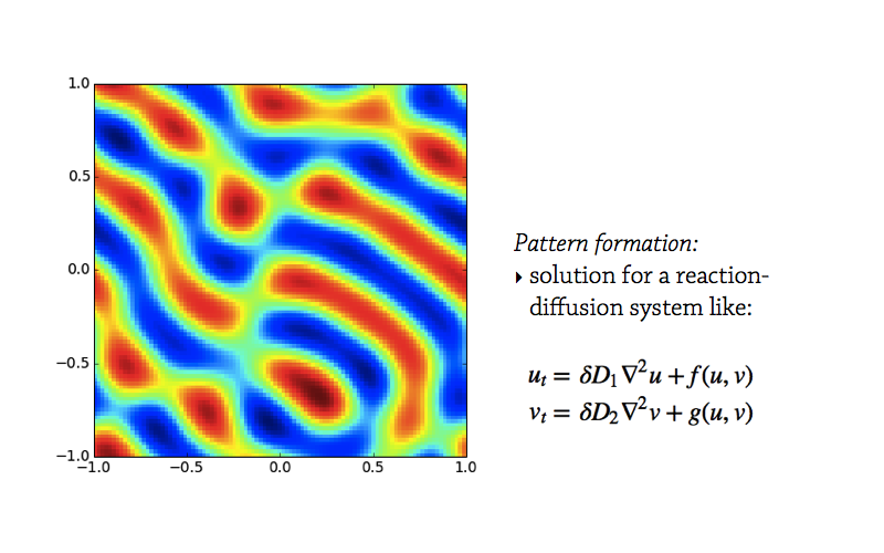 pattern-formation2.001